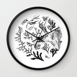 Sea Life no.2 Wall Clock