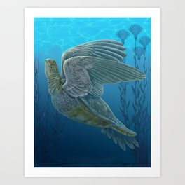 Turtle Dove Art Print