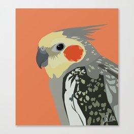 Marcus the cockatiel Canvas Print
