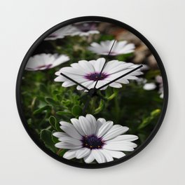 Margherite flovers Wall Clock