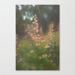Morning Bells Canvas Print