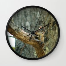 Brown Squirrel Wall Clock