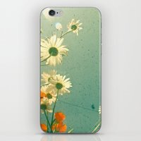 daisy iPhone & iPod Skins featuring Daisy by Cassia Beck