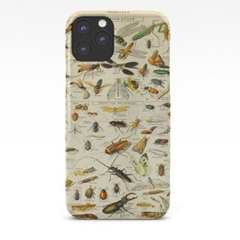 Insects Vintage Scientific Illustration French Language Encyclopedia Lithographs Educational iPhone Case