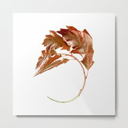 Warped English Oak Metal Print
