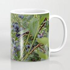 summer fruitful blueberry bushes. blueberry farm photography.  Mug