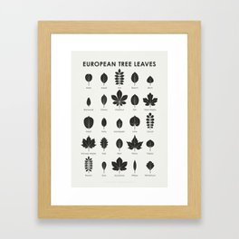 European Tree Leaves Framed Art Print