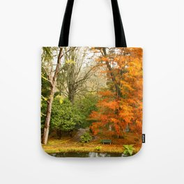 Willow in Autumn colors Tote Bag
