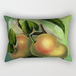 Bombay Mangos with Butterfly, Vintage Botanical Illustration Collage Art Rectangular Pillow