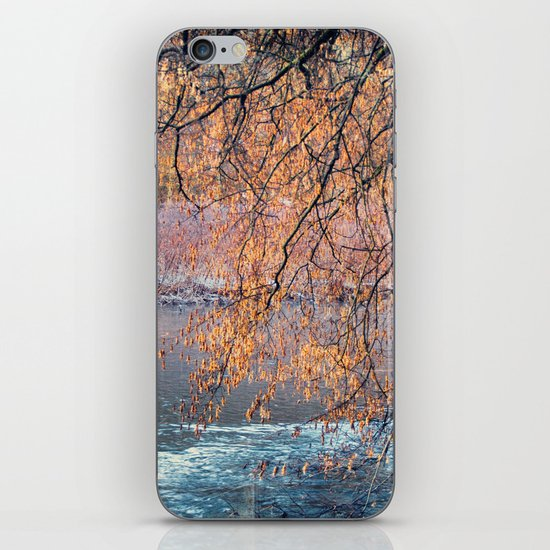 by the River iPhone & iPod Skin