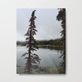 Strathcona Provincial Park Metal Print