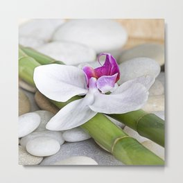 white Orchid flower  and green Bamboo still life Metal Print