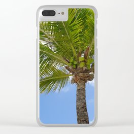 Palm Tree against a Blue Sky Clear iPhone Case