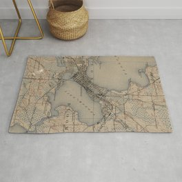 Vintage Map of Madison Wisconsin (1904) Rug