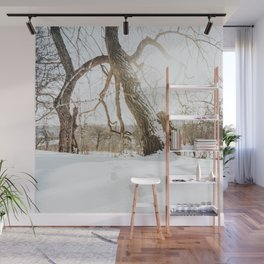 Atmospheric Winter Landscape Photo | Nature In Winter Photography | Footsteps In Snow With Backlight Wall Mural