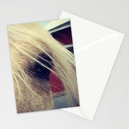 Palomino Eyes Camera Stationery Cards