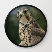 hawk Wall Clocks featuring Hawk by Herzensdinge