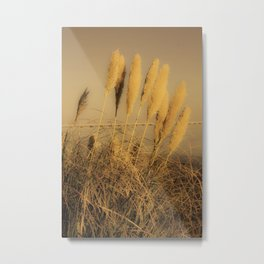 Ears of wheat by the sea in sepia effect Metal Print