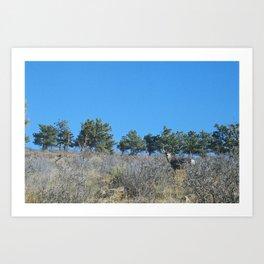 lyons & deer Art Print
