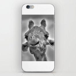 Smiling Giraffe iPhone Skin