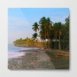Dominican Coast Metal Print