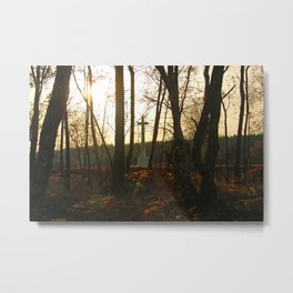 Peaceful Place of Remembrance Metal Print