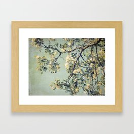 Vintage Honey Locust Tree in Bloom Spring Botanical Framed Art Print