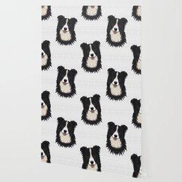 Happy Border Collie Wallpaper