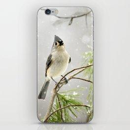 Snowy Songbird iPhone Skin