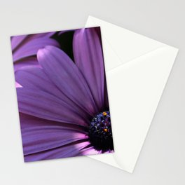 Osteospermum Stationery Cards