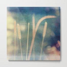 Blue Marsh Metal Print