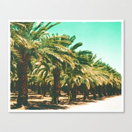 Coconut Tree Lineup Canvas Print