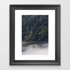 Big Sur Forest Framed Art Print