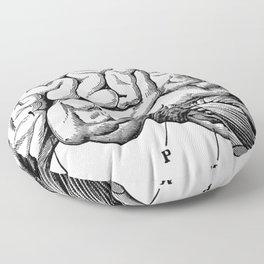Brains | Medical Office | Zombie | Hospital | Med Floor Pillow