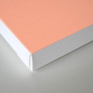 Peach Solid Color Canvas Print