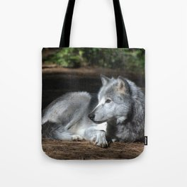 Gray Wolf at Rest Tote Bag