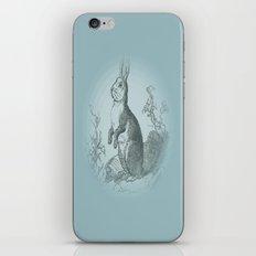 Bunny Rabbit {teal} iPhone & iPod Skin