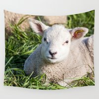 lamb Wall Tapestries featuring lamb by Marcel Derweduwen