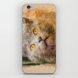 KITTEN RELAX iPhone Skin