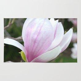 Soft Magnolia Days Rug
