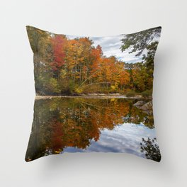Desktop Wallpapers USA Vogel State Park Nature Autumn park Roads forest Parks Forests Throw Pillow