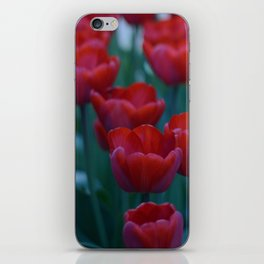 Red Tulips iPhone Skin