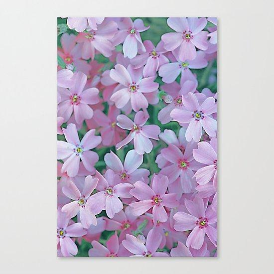 Flower Carpet(63) Canvas Print