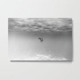 160625-9935 Metal Print