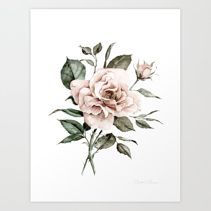 Faded Pink Rose Art Print