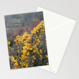 Harmonies Stationery Cards