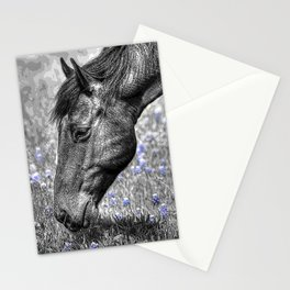 Horse & Bluebonnets Stationery Cards
