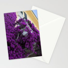 Flowers on a Balcony Stationery Cards