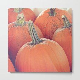 Jasmine Pumpkins Metal Print