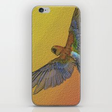 wildlife 1 iPhone & iPod Skin